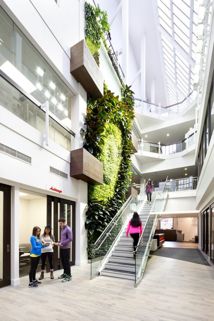 Large atrium with living wall
