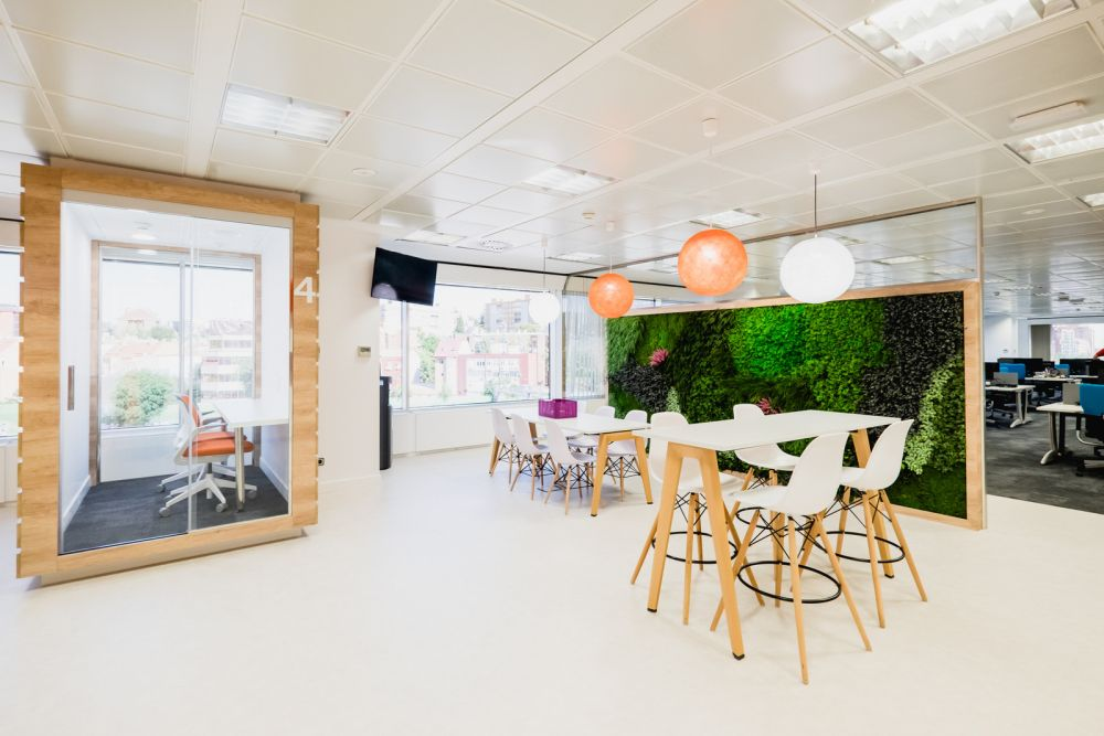Breakout area with green wall