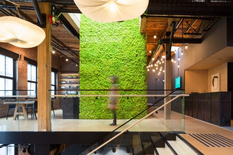 Green wall inside Slack's Vancouver offices