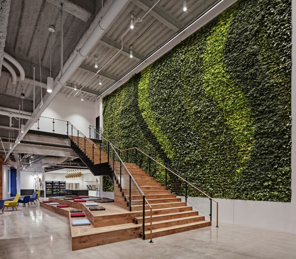 Large green wall in Boston office