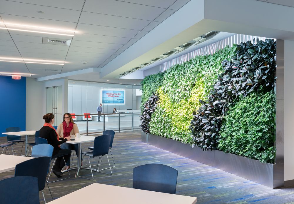 vistaprint office with a living wall