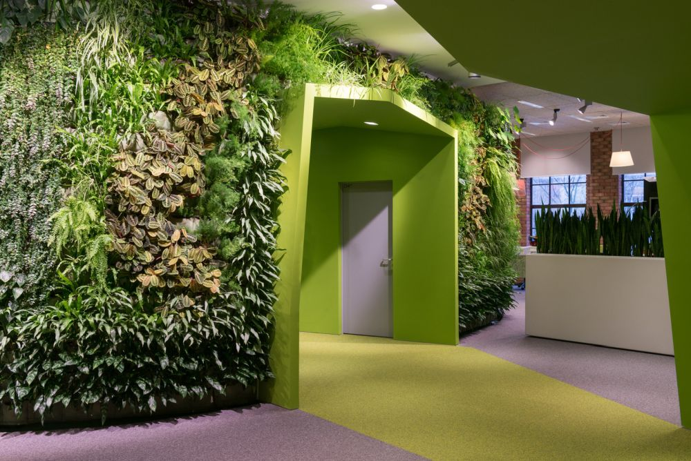 Yandex office replete with living walls