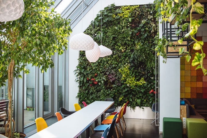 workspace with green wall