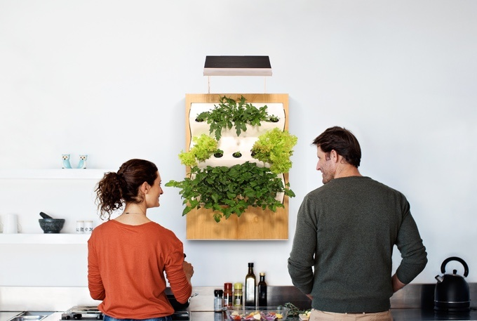 grow vegetables at the office