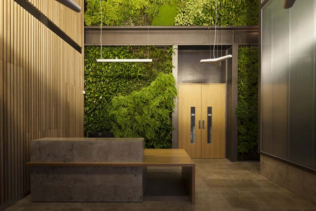 Wood-panelled office reception features living wall