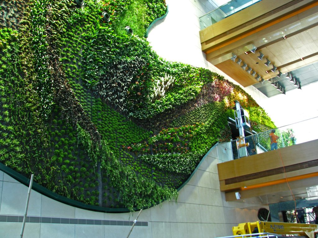 Green wall inside Icon hotel in Hong Kong
